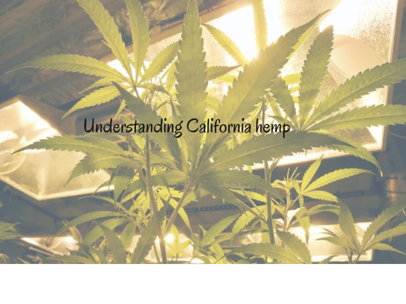 What should you know about California hemp?